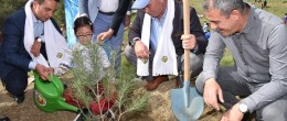 Karaisalı'da 'Zeytin Dalı Mehmetçik Ormanı' Oluşturuldu